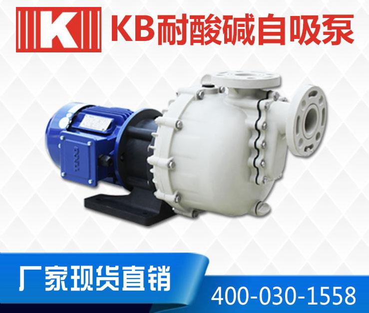 KB卧式耐酸碱自吸泵
