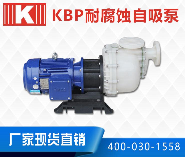 KBP耐腐蚀自吸泵