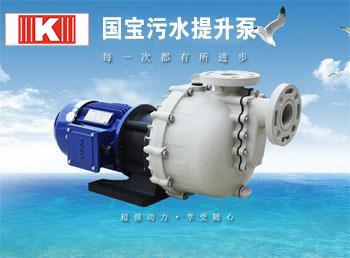 国宝耐酸碱自吸泵-废水处理实力派大将